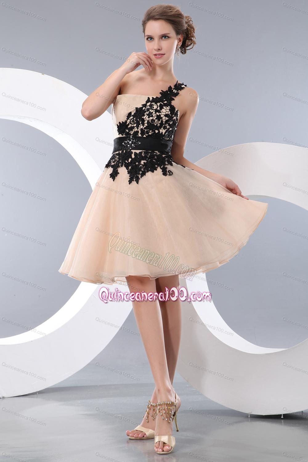 Champagne Organza Appliques Dress 16 Birthday Party Quinceanera 100