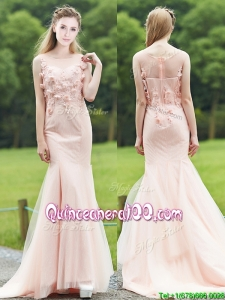 Luxurious See Through Light Pink Mermaid Dama Dress with Brush Train