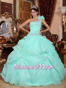 Apple Green Ball Gown One Shoulder Floor-length Organza Appliques 16 Birthday Party Dress