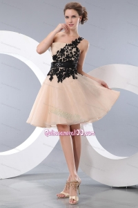 Champagne Organza Appliques Dress 16 Birthday Party