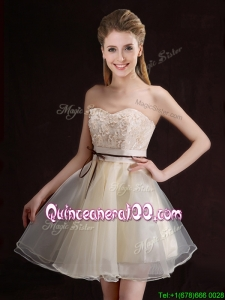 2017 Gorgeous Belted and Applique Short Dama Dress in Organza