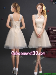 Hot Sale Scoop Laced and Applique Champagne Dama Dress