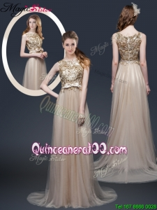 Luxurious Brush Train Mother Dresses with Appliques and Bowknot