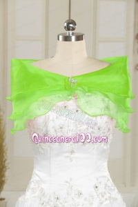 Beautiful Beading Organza Shawls in Spring Green