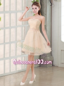 Champagne A Line Strapless Appliques Dama Dress