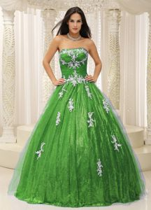 Wonderful Spring Green Paillette Sweet 16 Dress with Appliques