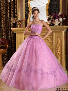 Floor-length Sweet 16th Dress in Pink with Appliques in Tulle