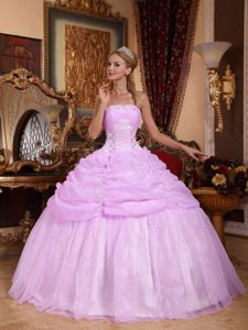 Lavender Appliques Organza Quinceanera Dress with Pick-ups