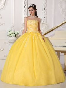 Golden Ball Gown Strapless Floor-length Taffeta and Tulle Appliques Quinceanera Dress