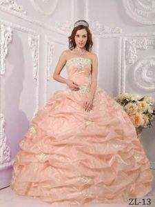 Strapless Appliques Ball Gown Pick-ups Dresses for Quinceanera