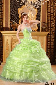 Sweetheart Appliques Quinceanera Dress in Yellow Green Ball Gown