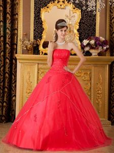 A-line Strapless Appliques Quinceanera Dresses in Coral Red