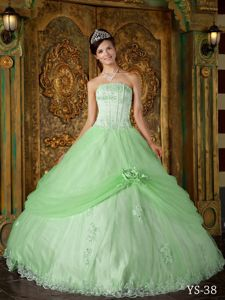 Apple Green Ball Gown Strapless Appliques Quinceanera Gown