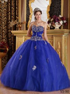 Blue Appliques and Ruche Sweetheart Floor-length Quinceanera Gowns