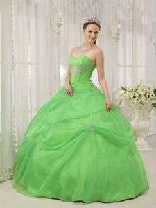 New Style Spring Green Appliques Sweetheart Quinceanera Dress with Pick-ups