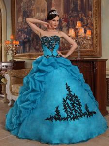 Beading and Pick-ups Blue Appliques Strapless Floor-length Sweet 16 Dresses