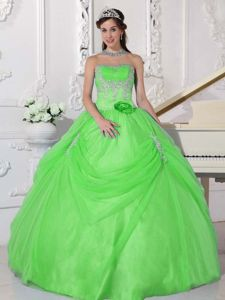 Appliques and Hand Made Flower Strapless Spring Green Quinceanera Dress