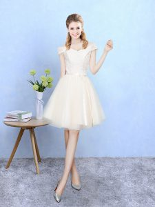 Champagne Dama Dress for Quinceanera For with Lace Off The Shoulder Cap Sleeves Lace Up