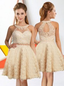 Sleeveless Knee Length Lace Zipper Dama Dress for Quinceanera with Champagne