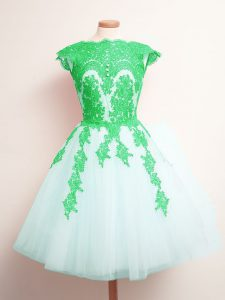 Tulle Sleeveless Mini Length Quinceanera Court Dresses and Appliques