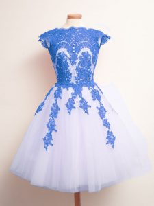 Blue And White Sleeveless Appliques Knee Length Dama Dress