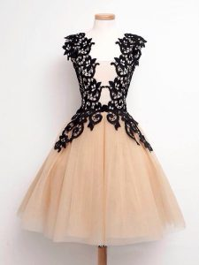 Perfect Champagne Lace Up Straps Lace Dama Dress Tulle Sleeveless