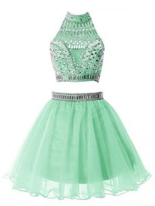 Beautiful Knee Length A-line Sleeveless Apple Green Court Dresses for Sweet 16 Zipper
