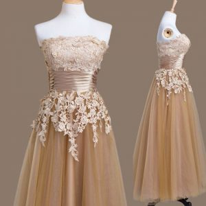 Delicate Strapless Sleeveless Tulle Quinceanera Court of Honor Dress Appliques Lace Up