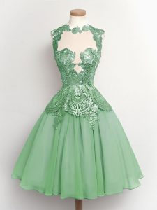 Luxury Apple Green High-neck Neckline Lace Quinceanera Court of Honor Dress Sleeveless Lace Up