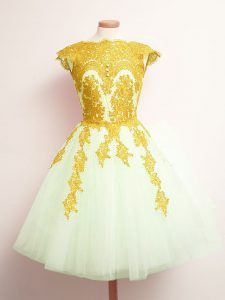 Custom Designed Tulle Scalloped Sleeveless Lace Up Appliques Dama Dress for Quinceanera in Multi-color