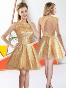 Custom Designed Sleeveless Knee Length Beading and Lace Backless Dama Dress with Champagne