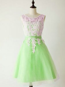 A-line Lace Quinceanera Dama Dress Lace Up Tulle Sleeveless Knee Length