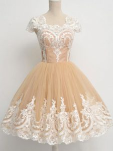 Edgy Champagne A-line Tulle Square Cap Sleeves Lace Knee Length Zipper Court Dresses for Sweet 16
