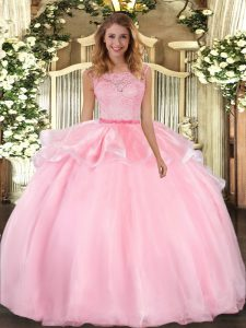Dynamic Pink Organza Clasp Handle Quinceanera Dress Sleeveless Floor Length Lace