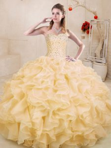 On Sale Gold Sleeveless Organza Lace Up Sweet 16 Dress for Sweet 16 and Quinceanera