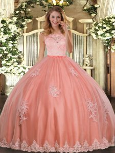 Sleeveless Lace and Appliques Clasp Handle Quinceanera Gowns