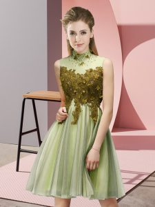 High-neck Sleeveless Quinceanera Court Dresses Knee Length Appliques Yellow Green Tulle