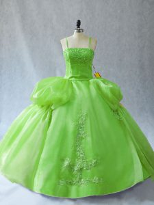 Nice Floor Length Sweet 16 Dress Organza Sleeveless Appliques