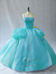 Organza Sleeveless Floor Length Quinceanera Dresses and Appliques