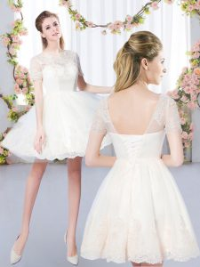 A-line Quinceanera Court of Honor Dress Champagne Scoop Tulle Short Sleeves Mini Length Lace Up