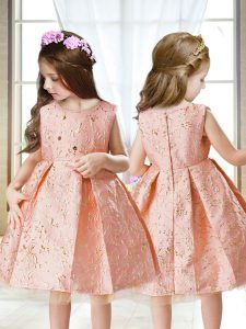 Pink Sleeveless Embroidery Mini Length Kids Pageant Dress