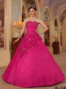 Plus Size Sweetheart Hot Pink Quinceanera Dress with Flowers