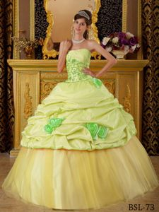 Beautiful Yellow Green Quinceanera Gown with Flowers and Ruche