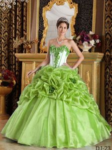 Yellow Green Sweetheart Quinceanera Gown Dress with Flowers