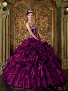 Eggplant Purple Ball Gown Appliqued Sweet 15/16 Birthday Dress