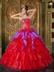Plus Size Multi-color Puffy Ruffled Appliqued Dress for Quince