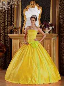 Noble Gold Ball Gown Quinces Dresses with Sash and Embroidery