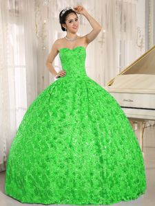 Spring Green Strapless Sequins and Appliques Quinceanera Dresses