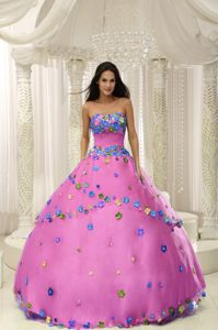 Best Puffy Pink Strapless Dress for Sweet 15 with Flora Appliques