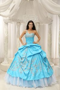 One Shoulder Ruched Bodice Embroidery Pick-ups Dress for Quince